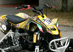 CAN-AM DS 450 USATO